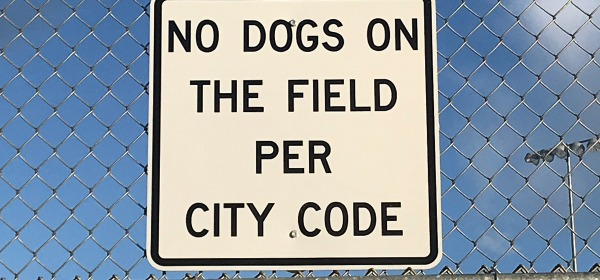 Sign: No dogs on the field per city code""