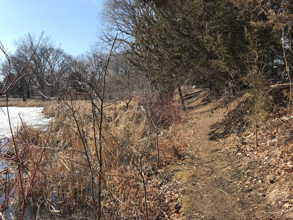 Dirt path at Mud Lake Park in West St. Paul.