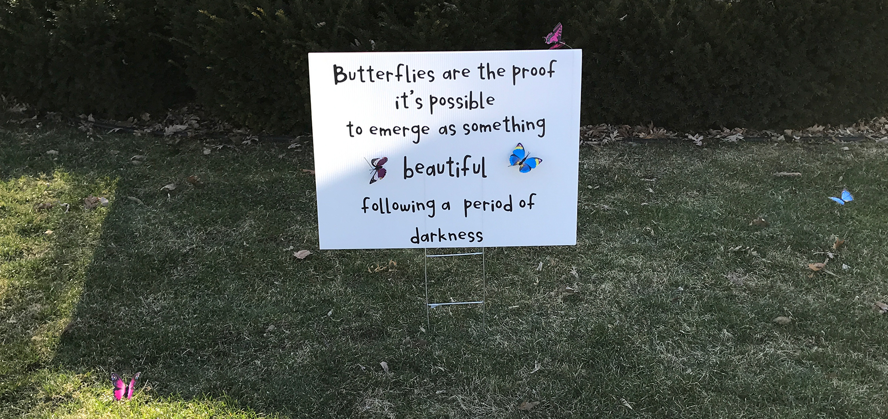 "Sign: ""Butterflies are proof it's possible to emerge as something beautiful following a period of darkness."""