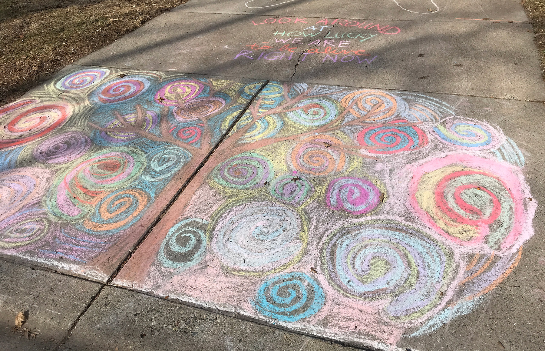 "Sidewalk chalk: ""Look around at how lucky we are to be alive right now."""