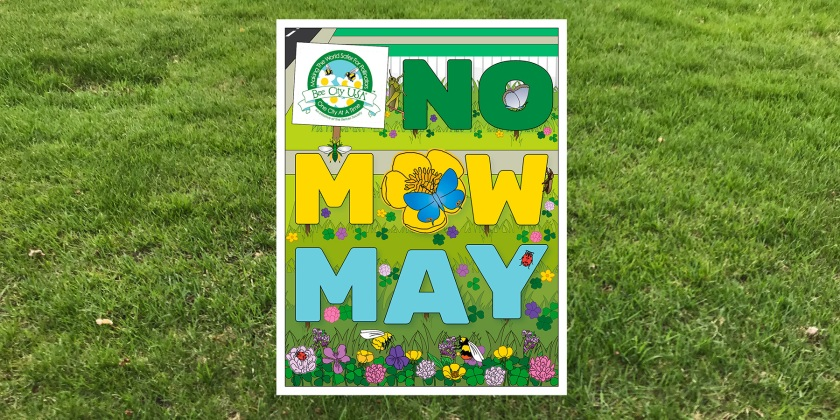 No Mow May in West St. Paul, Minnesota