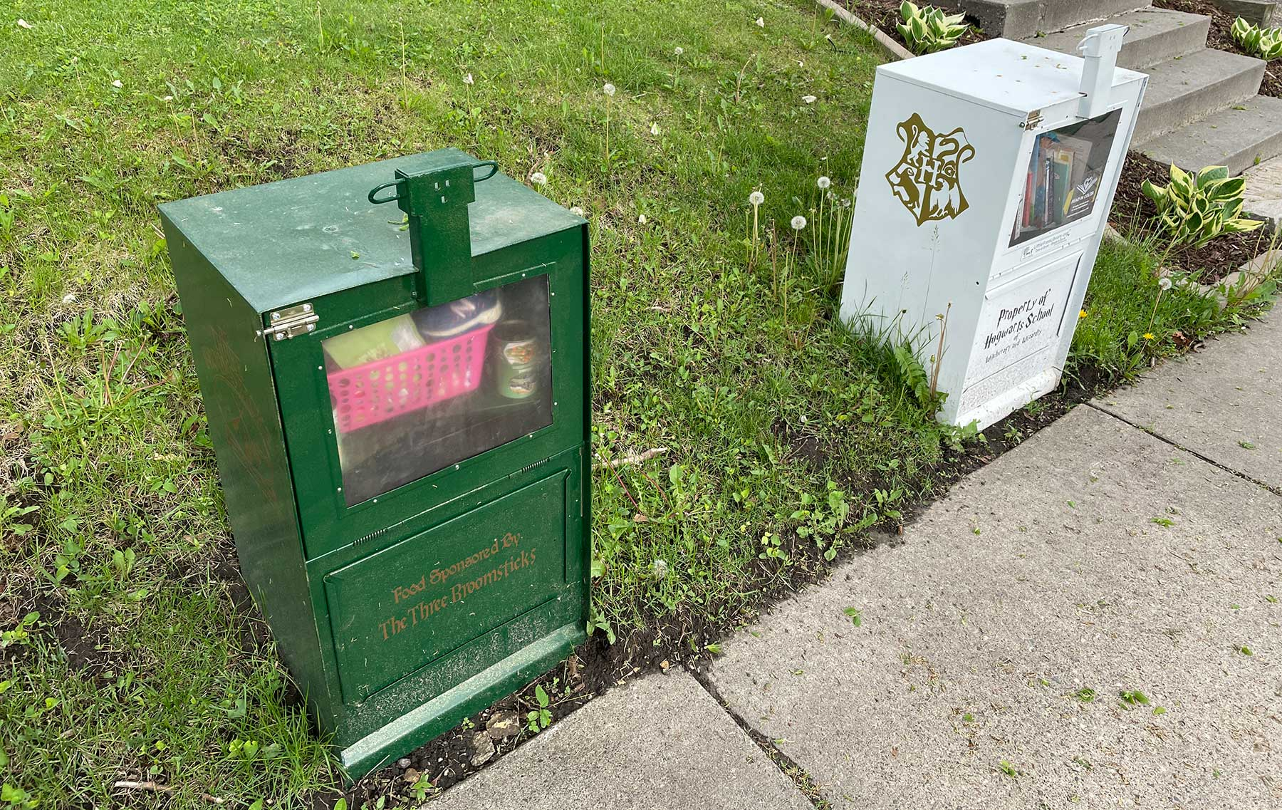 Harry Potter Little Free Libraries in West St. Paul